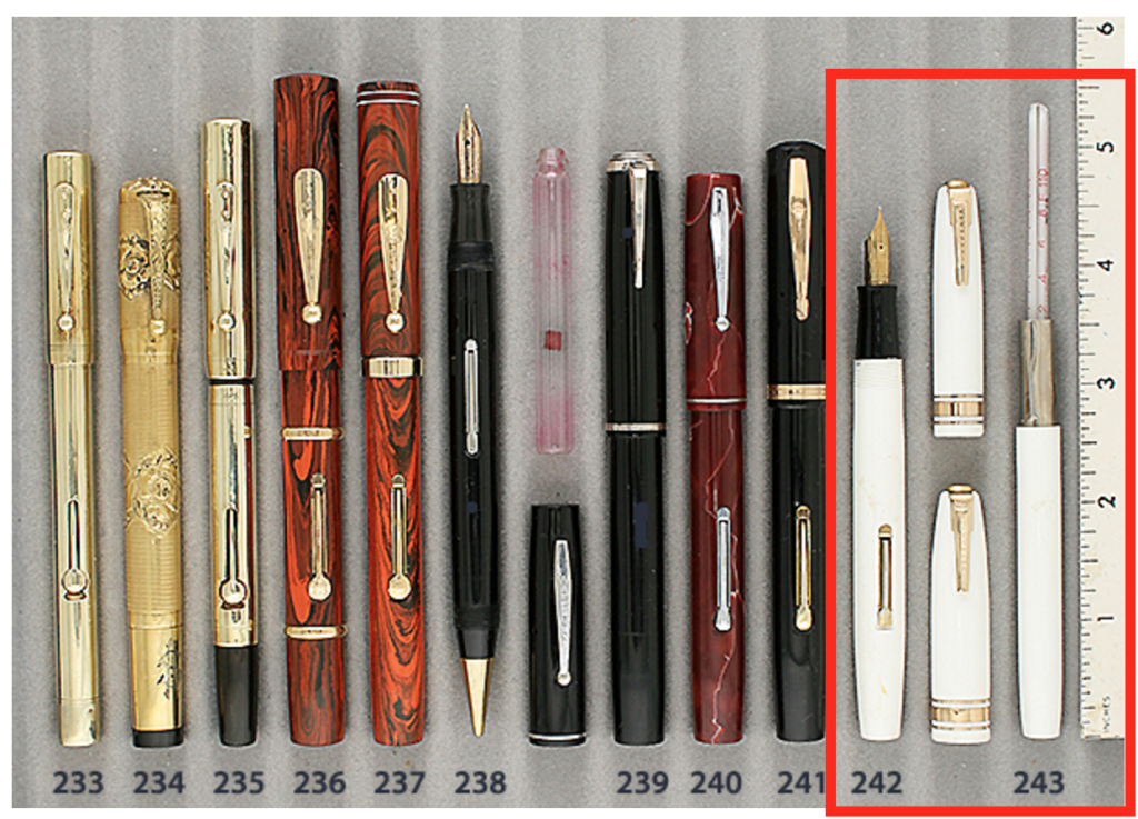 Waterman Doctor's Fountain Pen Set